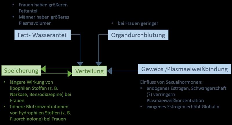 Pharmakologische Grundlagen/Fachartikel – GenderMed-Wiki